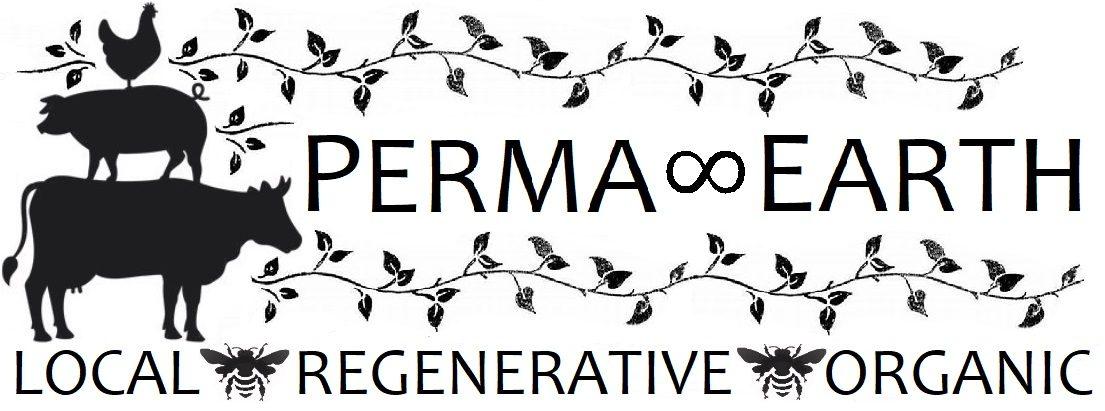 PERMA∞EARTH